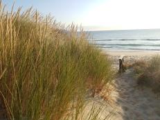 Marion Bay beach